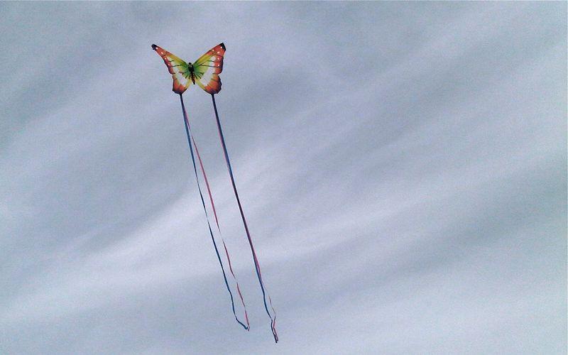 Kite flying - Version 2