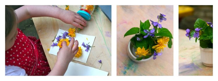 Flower pressing collage